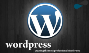 WordPress - Профессионал
